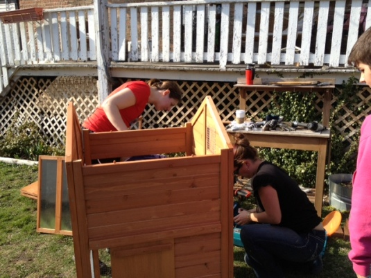 My sister Meghan and my cousin Cammie are working hard screwing together parts of the coop.