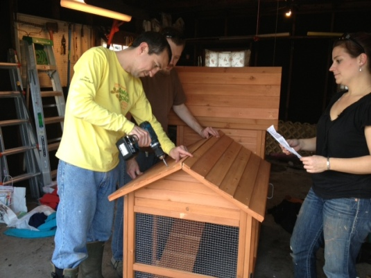 Now that the foundation is done the boys join us in frustrating task of assembling this coop.